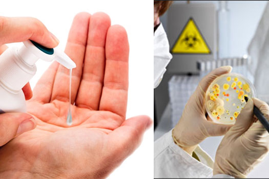Microbiological Analysis 4
